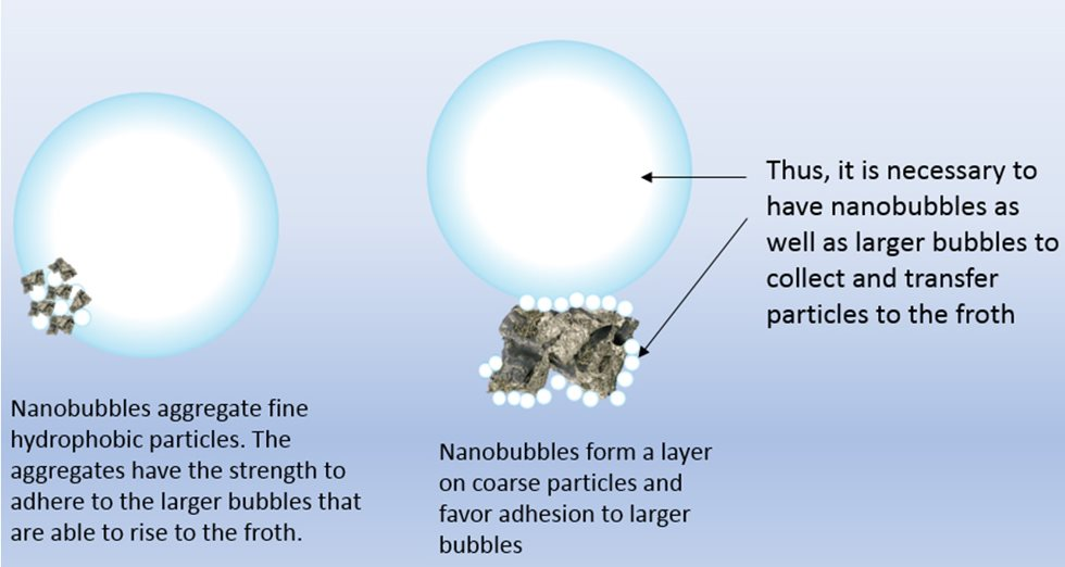 Effect of nanobubbles in flotation